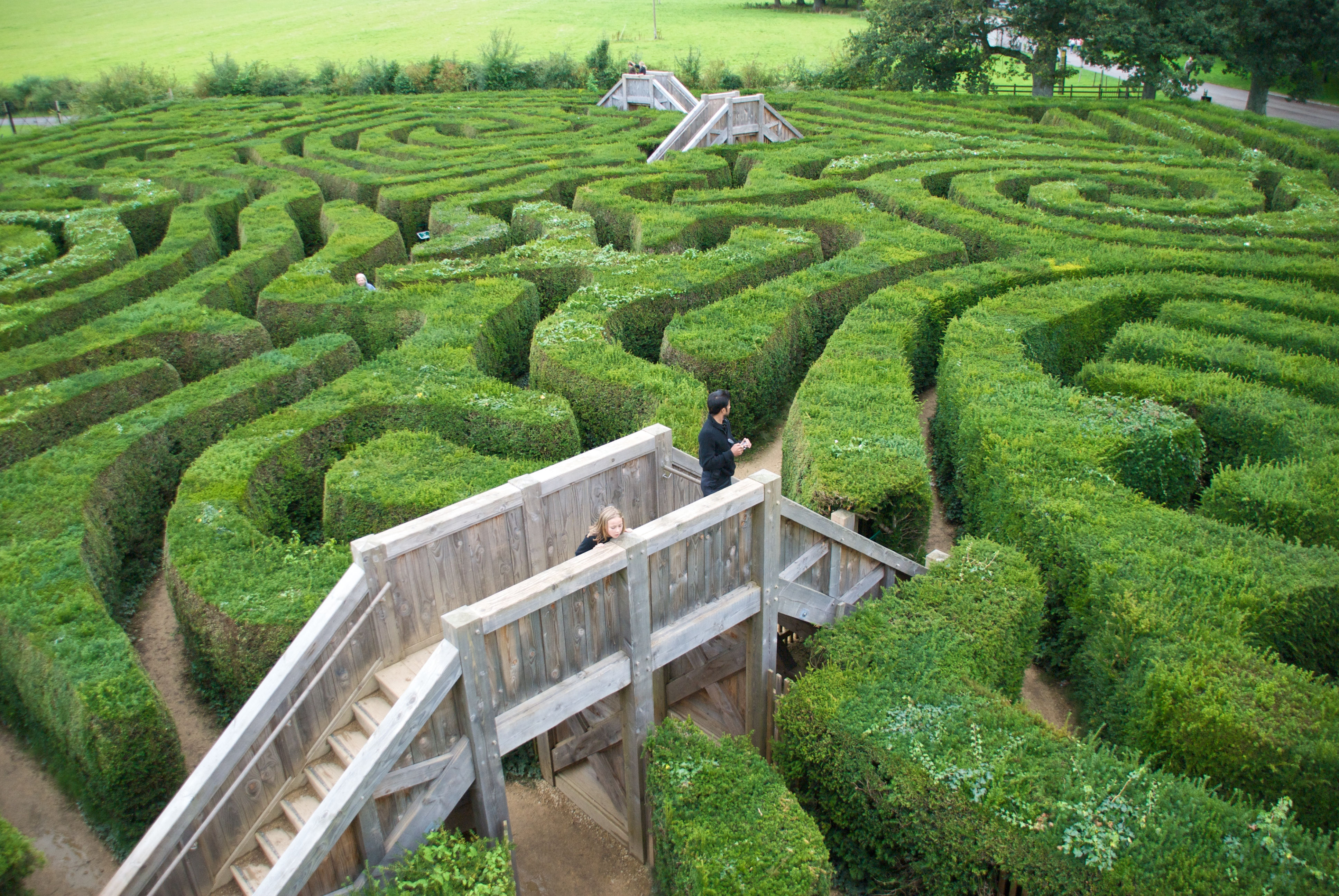 Life Is Often Like a Maze
